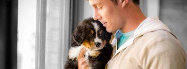 Adoption d'un premier chien